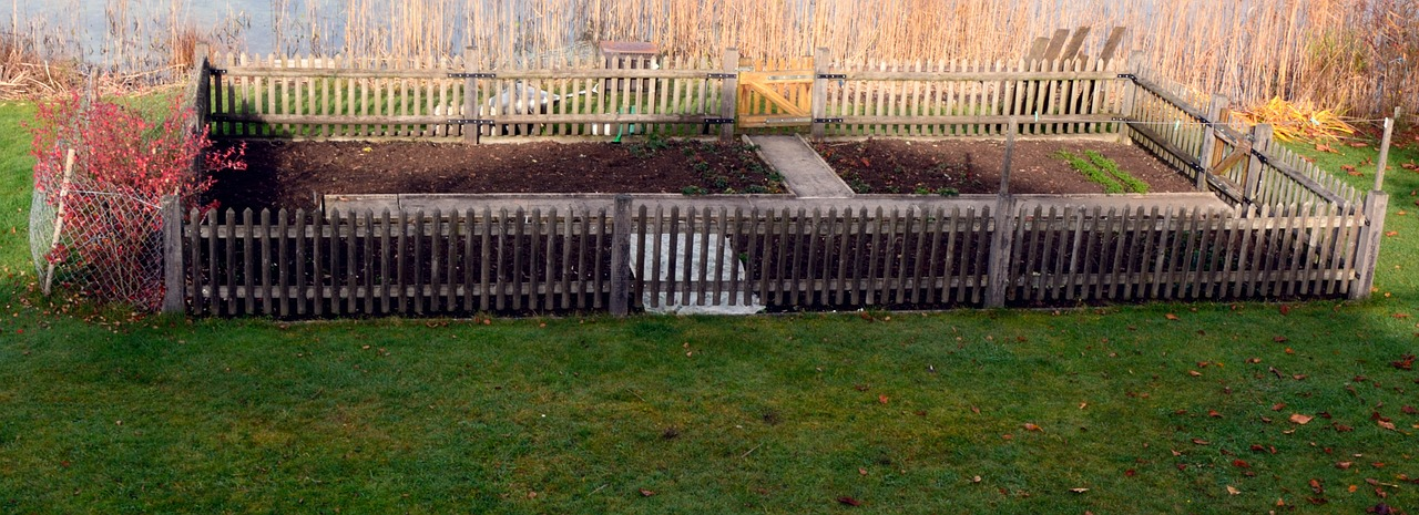 View of allotment Allotment Insurance quote