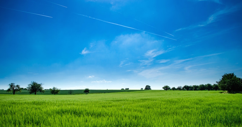 lush green field with blue sky how to buy land